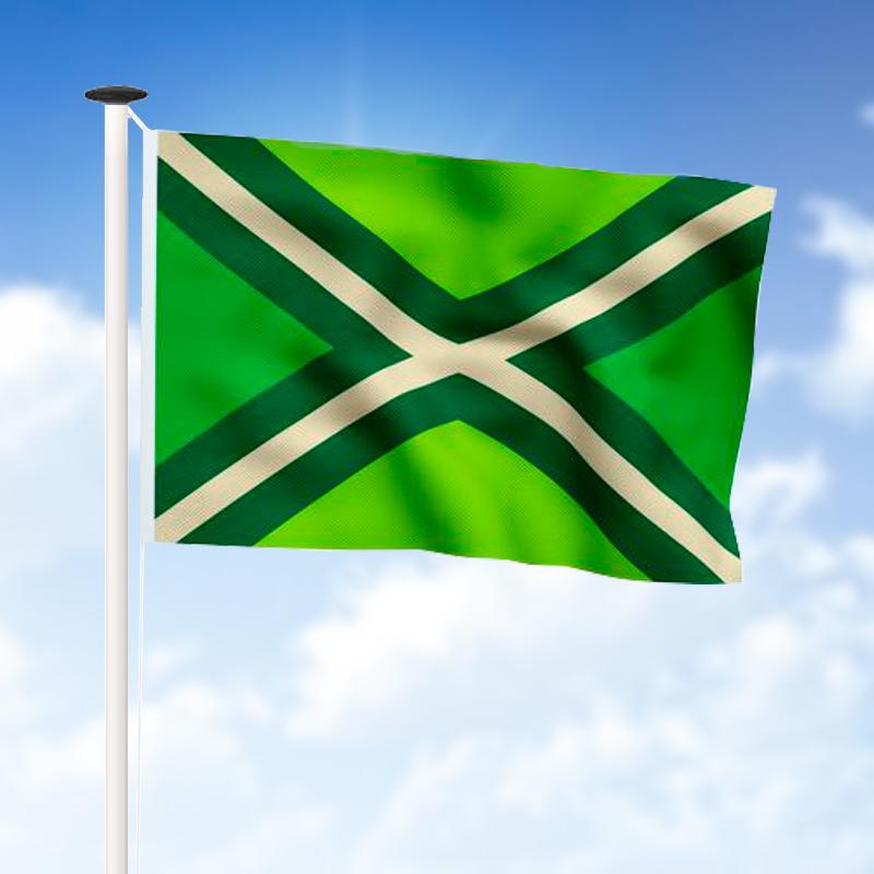 Regiovlaggen